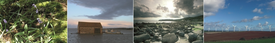 4 images showing the natural landscape